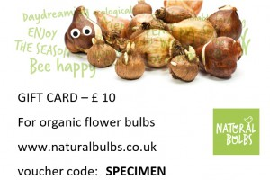 Gift Card for organic bulbs...