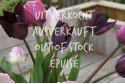Tulipa Forest Fruit mix