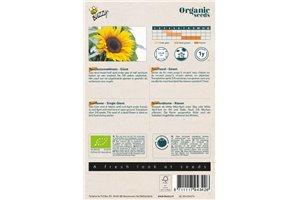 Sunflower - BIO